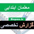گزارش تخصصی معلمان ابتدایی